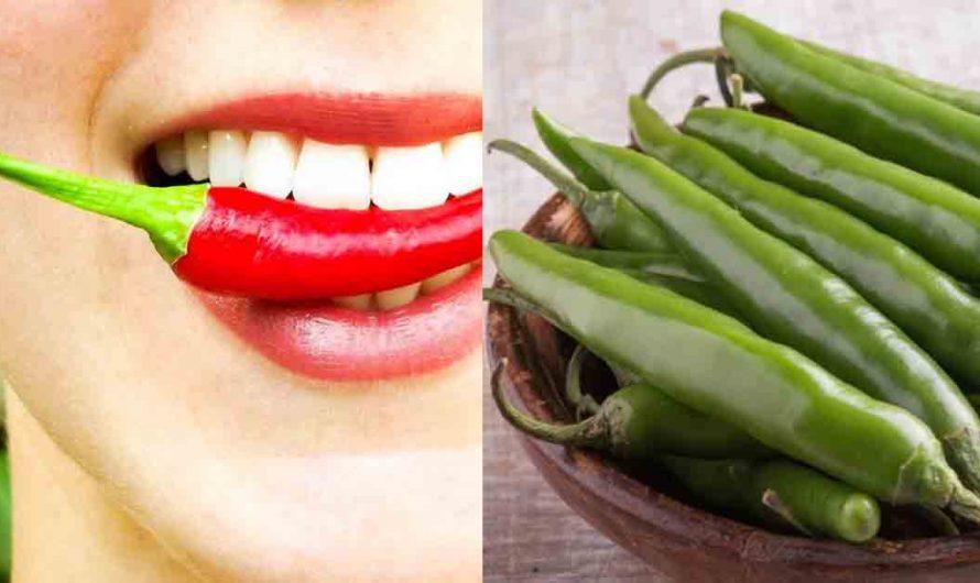 हिरवी मिरची खाण्याचे 'हे' आहेत महत्वाचे ५ फायदे, ५ फायदा तर  सर्वांसाठीच महत्वपूर्ण…